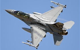 F-16AM Fighting Falcon, multirole fighter in the sky