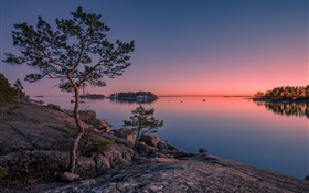 Finland, Finnish Bay, sea, island, sunset, trees, stones HD wallpaper