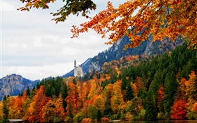 Germany, Bavaria, Schwangau castle, trees, river, autumn HD wallpaper