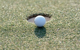 Golf ball on the grass HD wallpaper