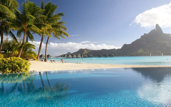 Lagoon, resort, palm trees, beach, pool, tropical Wallpapers Pictures Photos Images