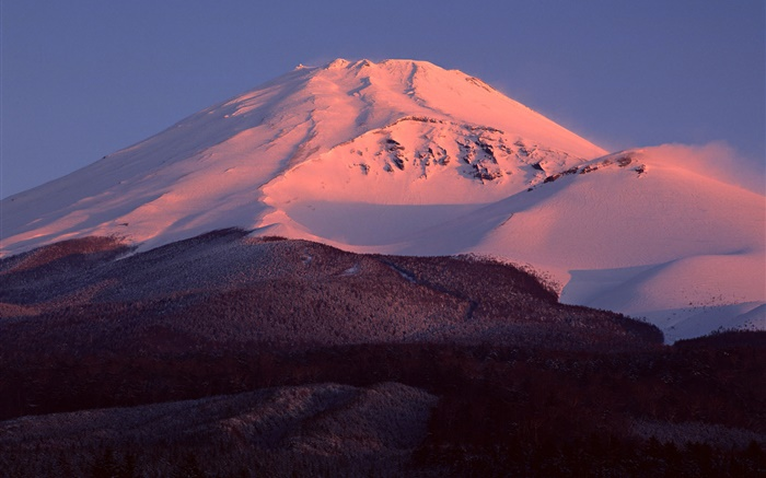 Mount Fuji, Japan, snow, dusk, forest Wallpapers Pictures Photos Images