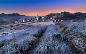 Night, dusk, houses, town, field, sky, moon HD wallpaper