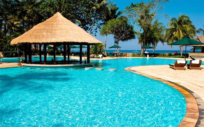 Resort, palm trees, pool, house, exotic Wallpapers Pictures Photos Images