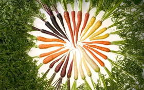 Vegetables, carrot, different colors, circle HD wallpaper