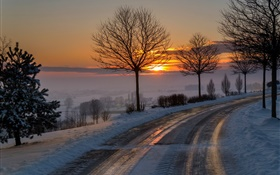 Winter, morning, dawn, road, trees, snow, sunrise HD wallpaper