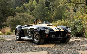 1965 Ford Shelby Cobra 427 retro car HD wallpaper