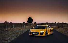Audi R8 V10 yellow supercar, dusk