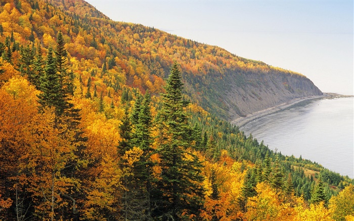 Autumn, mountains, forest, trees, coast, sea Wallpapers Pictures Photos Images