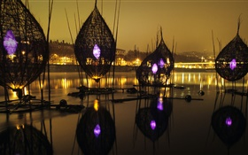 Festival of lights, river, France, Lyon HD wallpaper