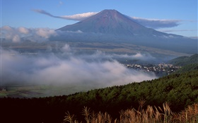 Mount Fuji, Japan, town, forest, grass, fog, clouds HD wallpaper