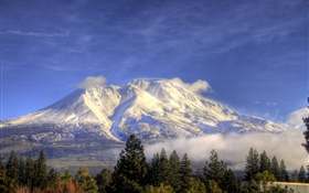 Mountain, snow, trees, clouds, Shasta, California, USA HD wallpaper