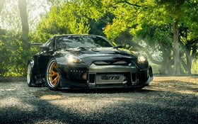 Nissan GT-R R35 black car front view, lights, trees