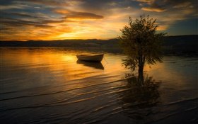 Sunset, clouds, river, tree, boat HD wallpaper