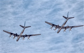 Tupolev TU-95 aircraft airshow HD wallpaper