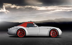 Wiesmann GT MF5 roadster side view