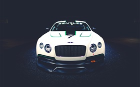 Bentley Continental GT3 Concept race car front view HD wallpaper