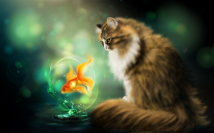 Cat and goldfish, art drawing Wallpapers Pictures Photos Images