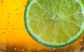 Lime citrus slice, bubbles, macro photography HD wallpaper