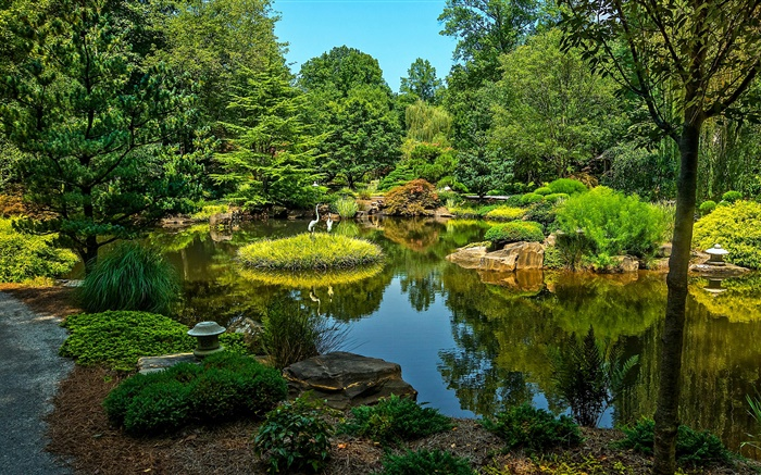 Gibbs Gardens, USA, pond, trees, grass Wallpapers Pictures Photos Images