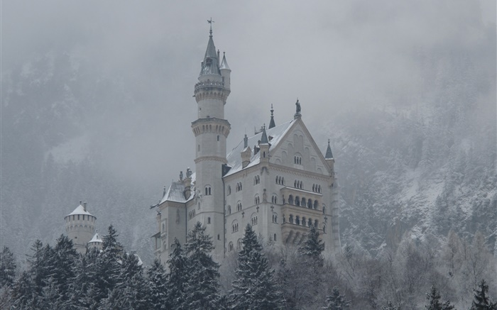 Neuschwanstein, castle, mountains, trees, snow Wallpapers Pictures Photos Images