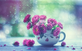 Pink flowers, cup, rain HD wallpaper
