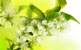 White apple flowers, flowering, twigs, spring