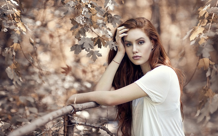Brown hair girl in autumn, trees, fence Wallpapers Pictures Photos Images