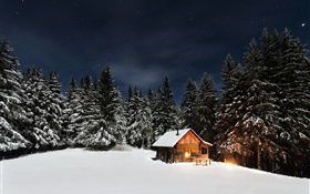 Winter, snow, trees, night, hut HD wallpaper