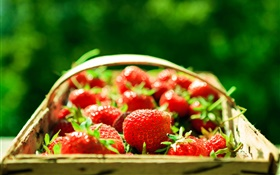 Fresh strawberry, basket, green background HD wallpaper