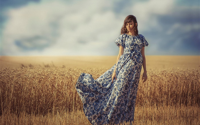 Girl in the wind, summer, wheat field Wallpapers Pictures Photos Images