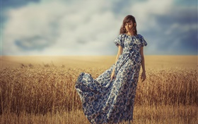 Girl in the wind, summer, wheat field HD wallpaper