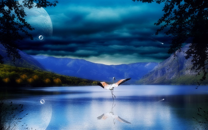 Lake, water reflection, mountains, stork, wings Wallpapers Pictures Photos Images