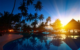 Palm trees, house, sunrise, sun rays, sea water, Thailand HD wallpaper