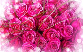Pink roses, bouquet, glare