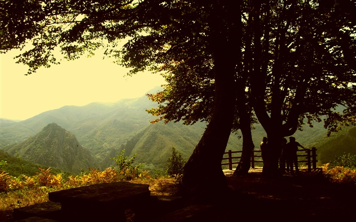 Trees, mountain, dusk Wallpapers Pictures Photos Images