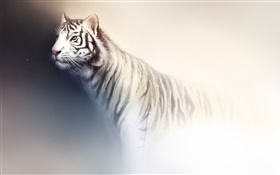White tiger watercolor painting HD wallpaper