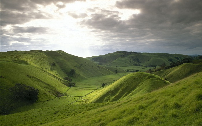 Mountains, green, grass, field, clouds, sunshine Wallpapers Pictures Photos Images