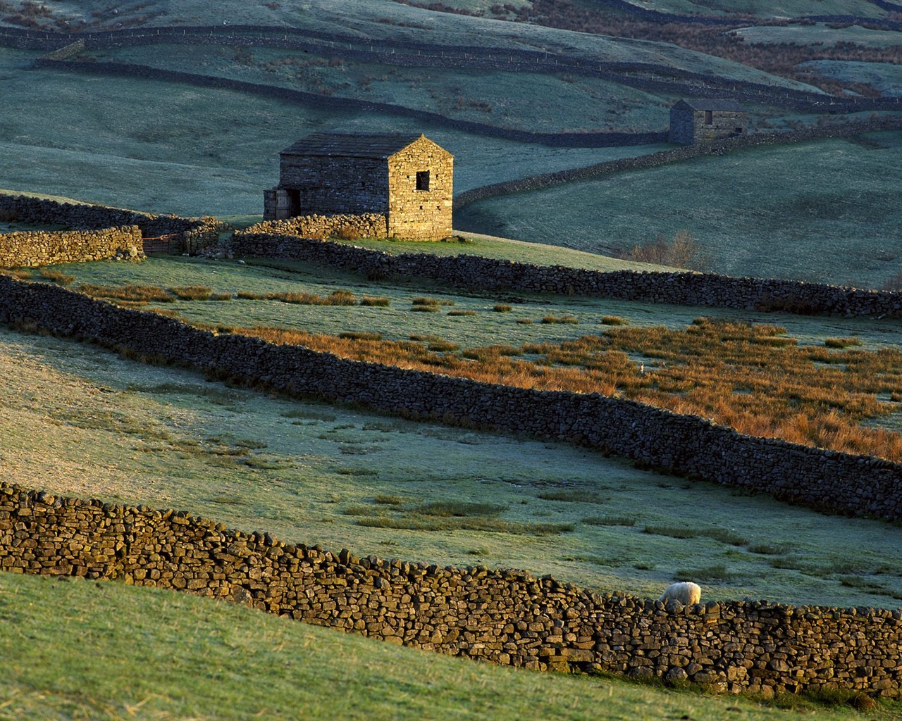 Stone house, fence, grass, sheep 1280x1024 wallpaper