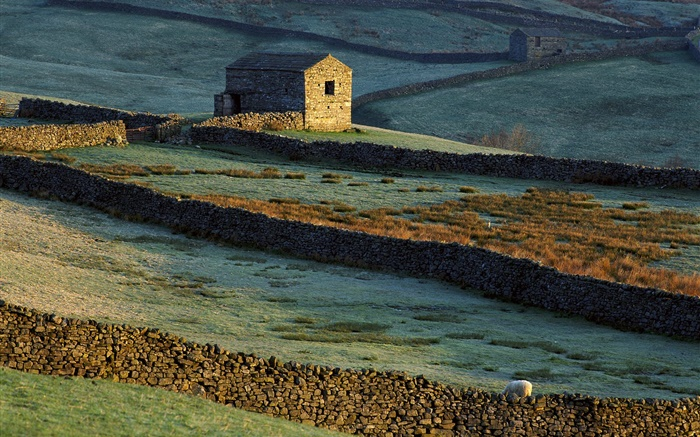 Stone house, fence, grass, sheep Wallpapers Pictures Photos Images