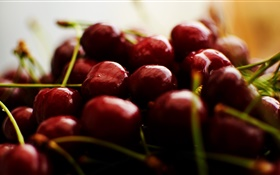 Cherry photography, fruit HD wallpaper