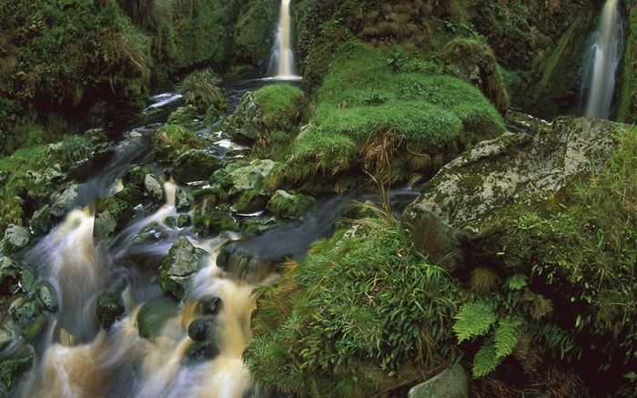 Waterfall, stream, stones, moss Wallpapers Pictures Photos Images