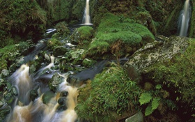 Waterfall, stream, stones, moss HD wallpaper