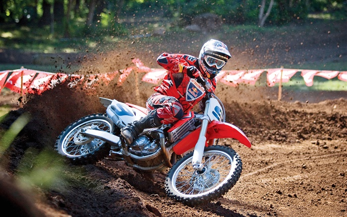 Honda motorcycle, racing, red dress rider Wallpapers Pictures Photos Images