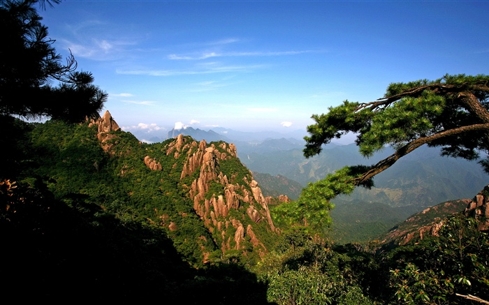 Mountains, trees, sky, nature landscape Wallpapers Pictures Photos Images