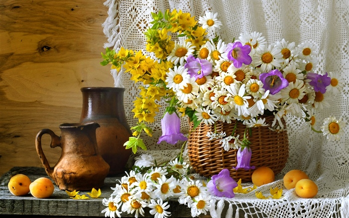 Room decoration, wildflowers, chamomile, apricots Wallpapers Pictures Photos Images