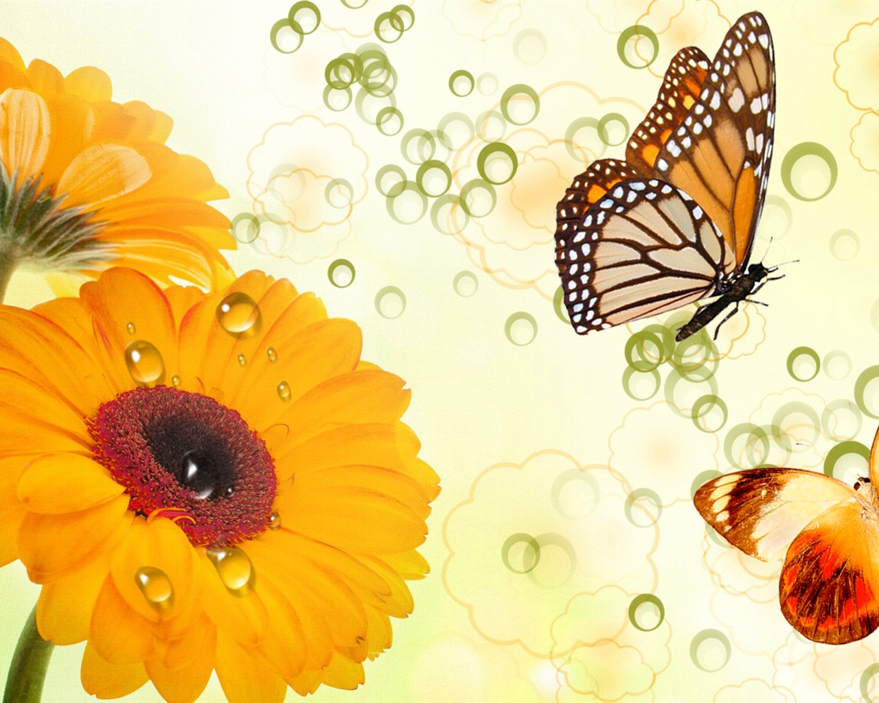 Yellow flowers and butterflies, creative design 1280x1024 wallpaper