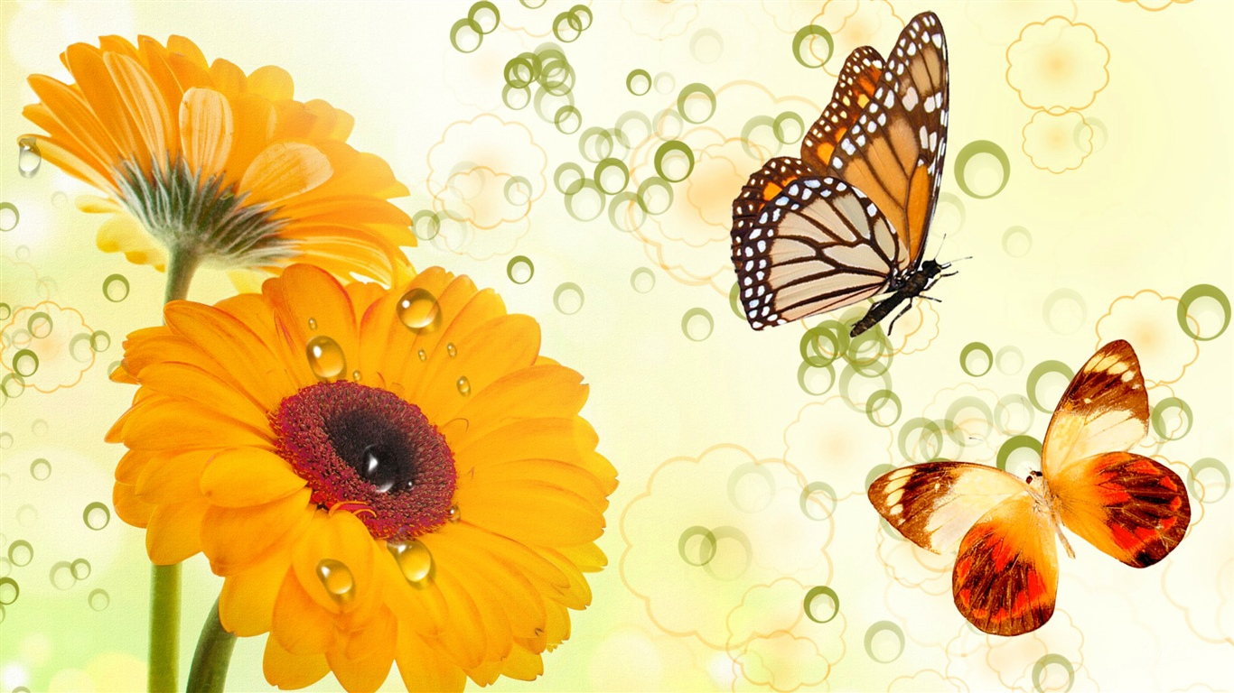 Yellow flowers and butterflies, creative design 1366x768 wallpaper