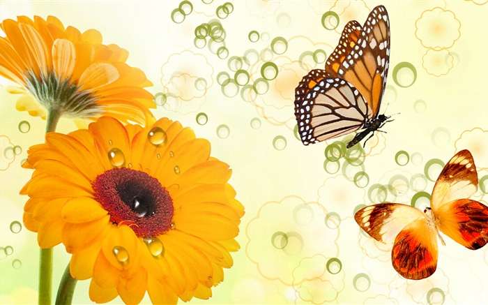 Yellow flowers and butterflies, creative design Wallpapers Pictures Photos Images