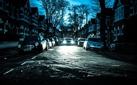 City, night, cars, trees, houses HD wallpaper